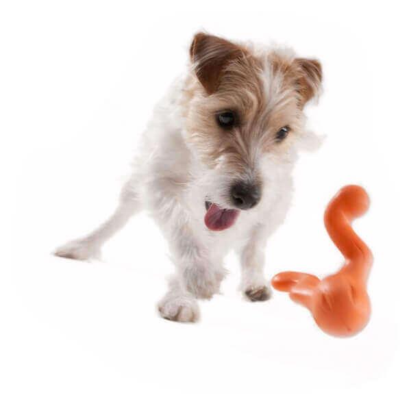 Tizzi - Jouet à macher et à lancer chien Zogoflex_1