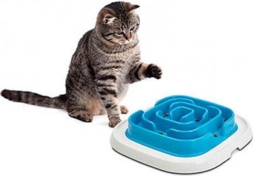 Denkspiel und Anti-Schling-Napf Pet enigma LARGE 21 blau Level 2