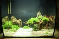 33780_Aquarium-Flex-FLUVAL_de_Olaf_13378826005978ee0f51fa81.60187646