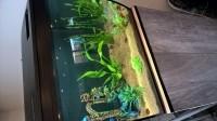 33780_Aquarium-Flex-FLUVAL_de_Sandra_1177412871590ca9438df508.66839424