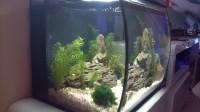 Aquarium-Flex-FLUVAL-noir_de_Emmanuel_11302179625af2ec574a2f82.62458472