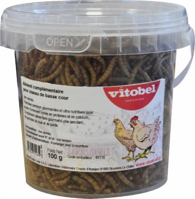 Gusanos de harina deshidratados para gallinas