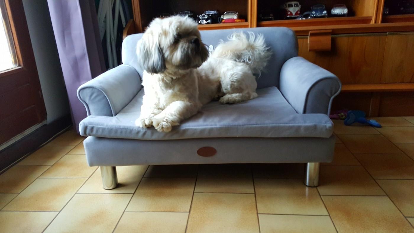 canap pour chien zolia liloe l59cm panier et corbeille. Black Bedroom Furniture Sets. Home Design Ideas