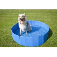 Piscine pour chien et jouet d'eau