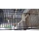 Cage-ZOLIA-Teoss-pour-oiseaux-exotiques-et-canaris---h61-cm-_de_gladys_14638818785eb00970a89023.34393007