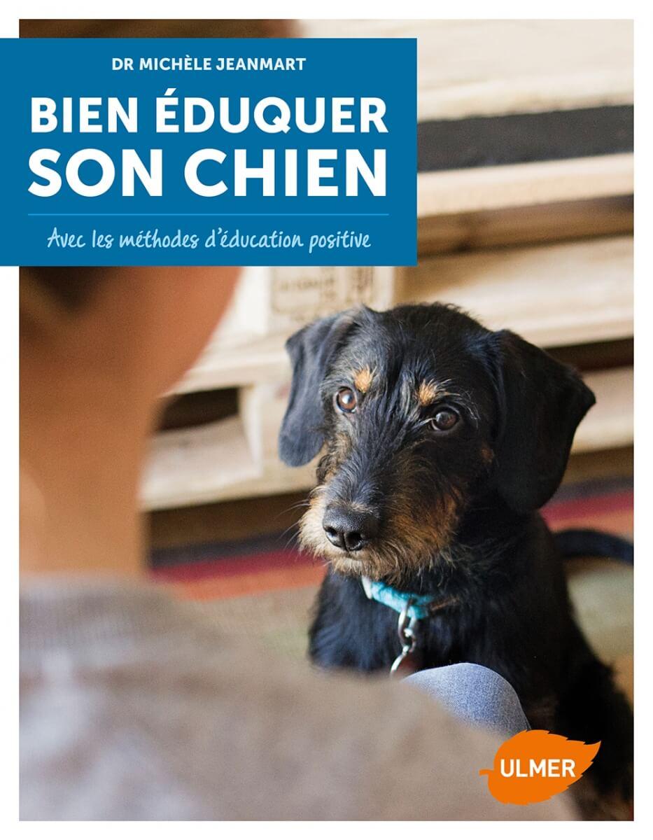 bien duquer son chien avec les m thodes d 39 ducation positives livres chiens. Black Bedroom Furniture Sets. Home Design Ideas