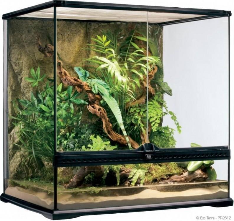 Terrario Exo Terra 60 x 45 x 60 cm