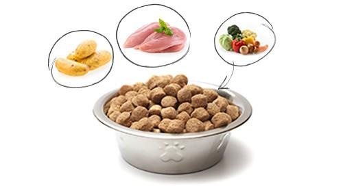 Quality sens sans c r ales chiot de petite race croquettes chien - Croquette sans cereales chiot ...