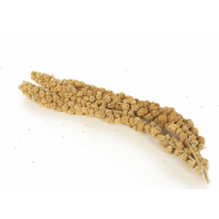 Iako yellow millet for birds (4)