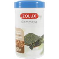 Gammarus Futter für Wasserschildkröten