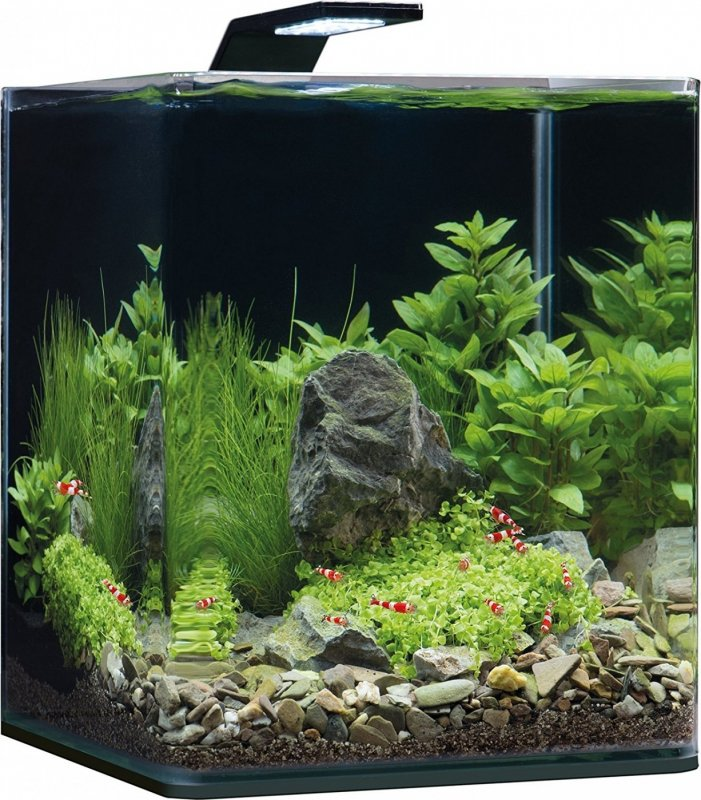 Dennerle Aquarium NanoCube Complete Plus Style LED