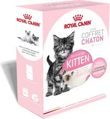 Coffret Chaton ROYAL CANIN