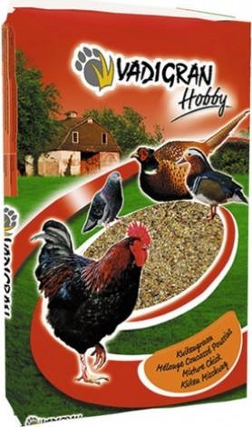 HOBBY Mistura fina para pintos e codornizes