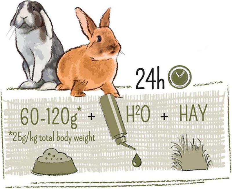 Compleet dwergkonijnenvoer PUUR