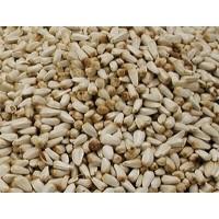 Graines de Cardy pour perruche et perroquet