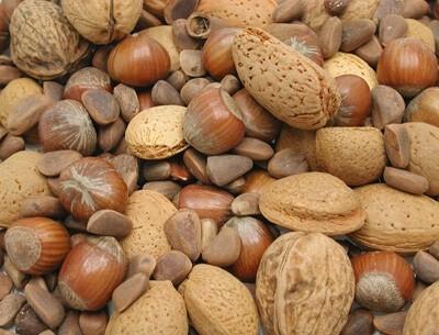 Mélange de noix pour grandes perruches et perroquets_0