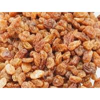 RAISINS SECS aliment complémentaire pour perroquet