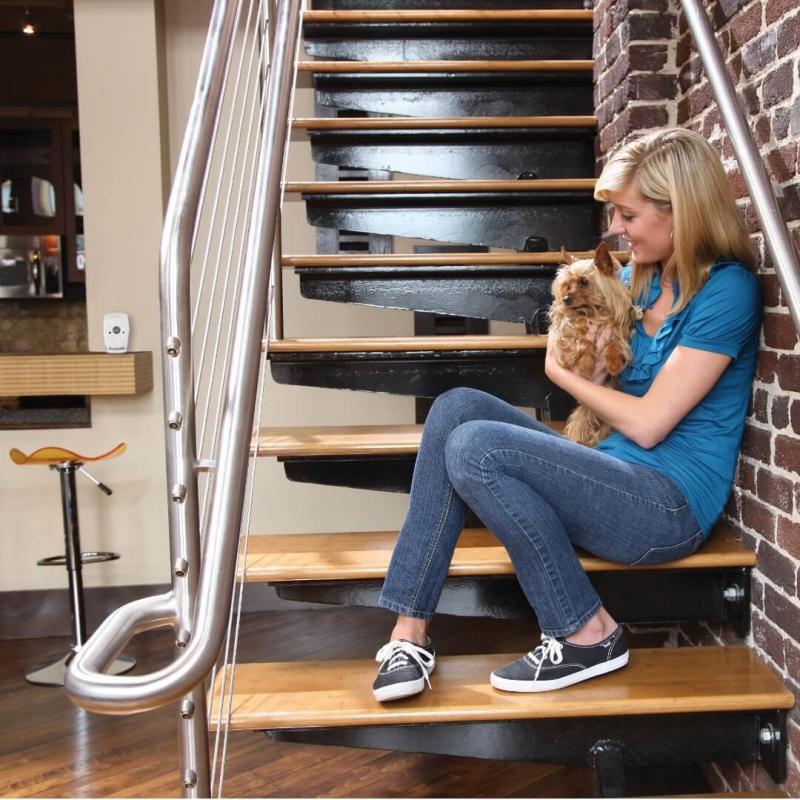 PETSAFE Indoor Bark Control Système anti-aboiements d'intérieur