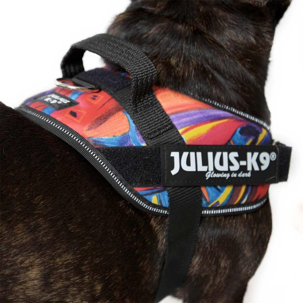 Harnais Julius K9 IDC EDITION SPECIALE Violet Psycho Canis_2