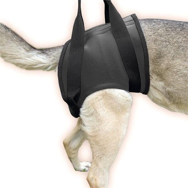 JULIUS K9 Harnais pour chien de soutien à la marche, hanches