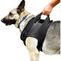 JULIUS K9 Arnés ortopédico delantero para perros