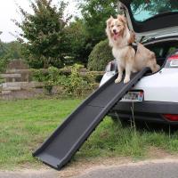 Accesorios de transporte para perros en el coche