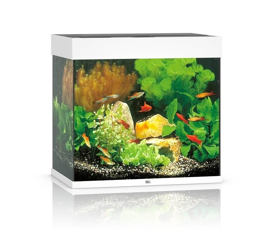 acuario juwel lido 120 led blanco acuario y mobiliario. Black Bedroom Furniture Sets. Home Design Ideas