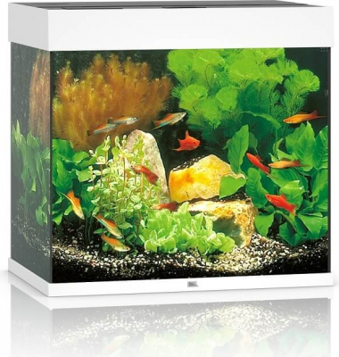 JUWEL Aquarium LIDO 120 LED blanc
