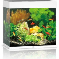 JUWEL Aquarium LIDO 120 LED blanc (1)