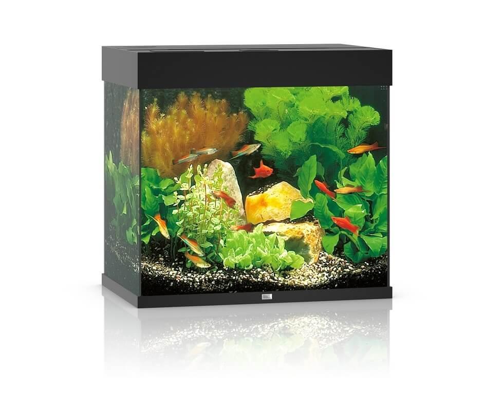 Juwel aquarium lido 120 led noir aquarium et meuble for Aquarium et meuble