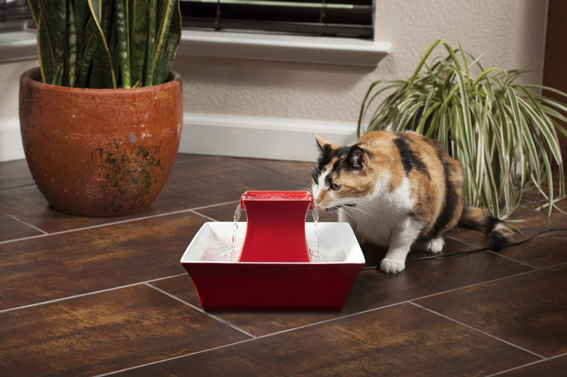 Fontaine Drinkwell Pagoda rouge ou gris pour chien et chat