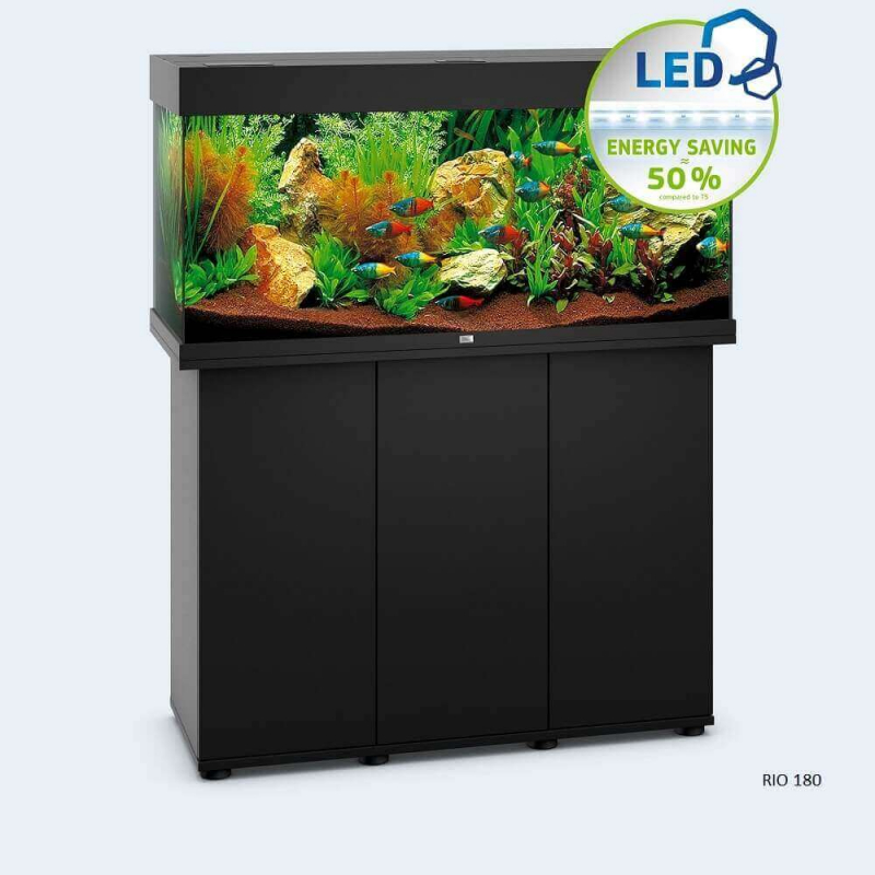 JUWEL Aquarium RIO LED noir - sans meuble