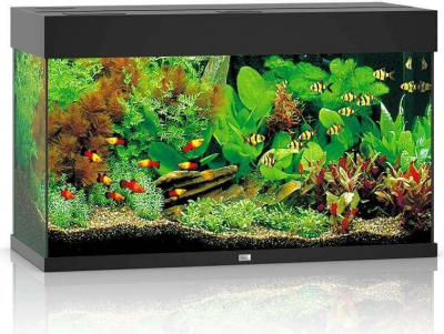 JUWEL Aquarium RIO LED noir - sans meuble