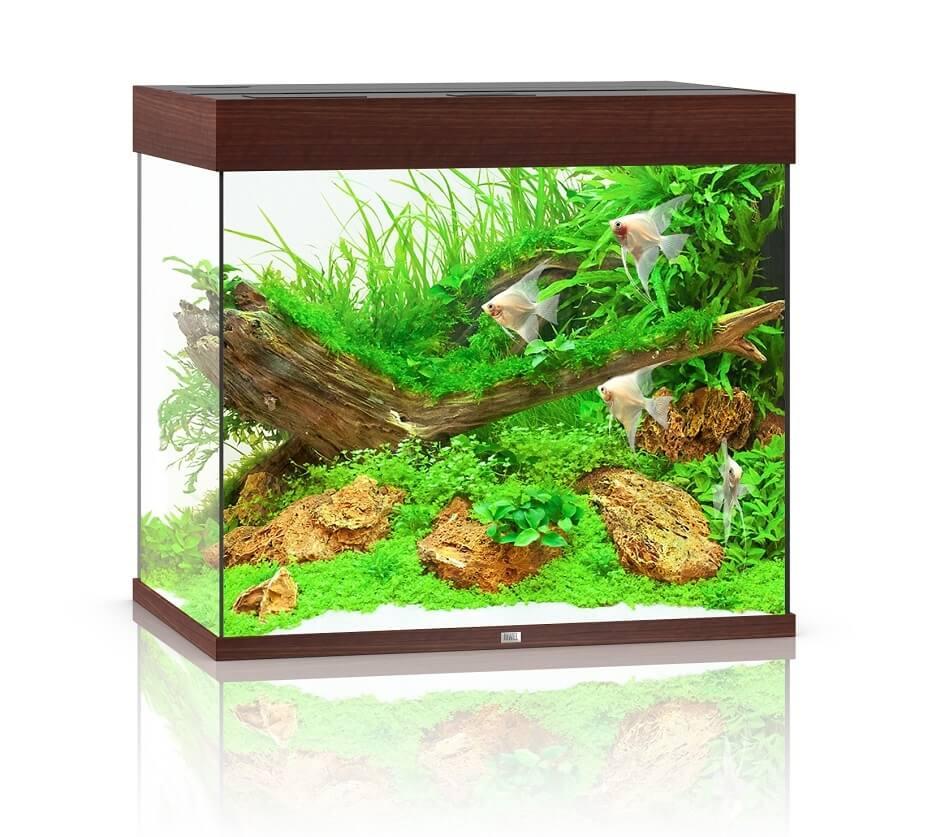 JUWEL Aquarium LIDO 200 LED bois foncé_0