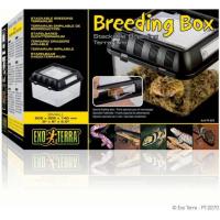 Boite d'élevage pour reptiles Breeding Box