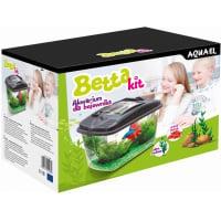BETTA KIT 6L avec plante et gravier