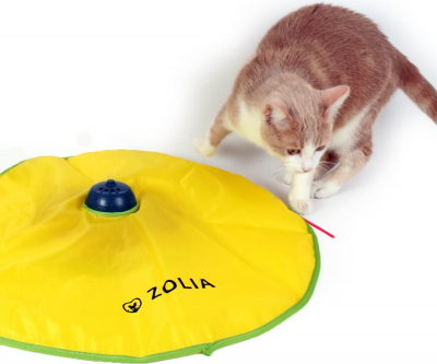 Crazy Cat Toy for cats