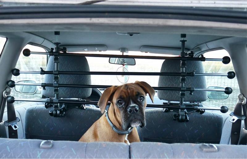 auto gitter doggy stop f r hunde. Black Bedroom Furniture Sets. Home Design Ideas