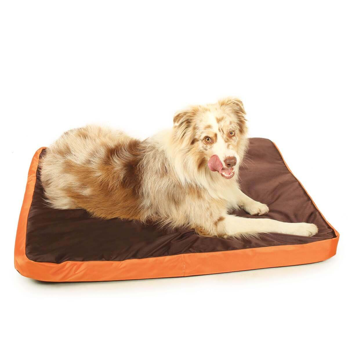 matelas relax dog bicolore imperm able 100cm pour chien coussin et tapis. Black Bedroom Furniture Sets. Home Design Ideas
