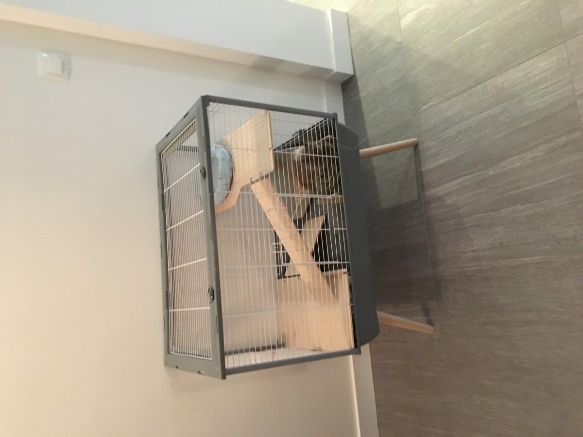 d3ea1bf19821e5 Cage NEO Muki grise pour lapin et grands rongeurs