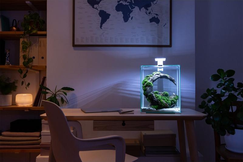 AQUAEL Aquarium Shrimpset Day § Night - plusieurs tailles disponibles
