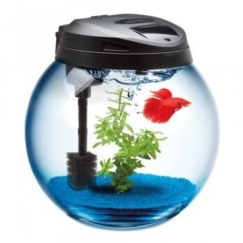 Aquael aquarium boule sph re aquarium et meuble for Aquarium en boule