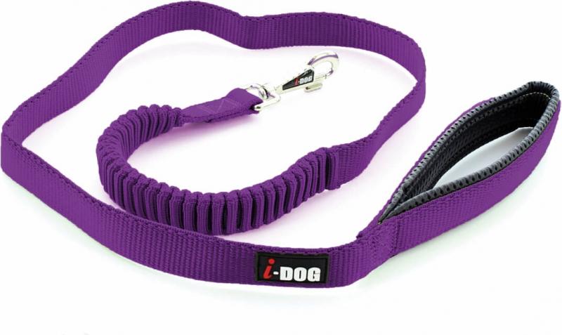 Laisse confort IDOG violet/gris avec boucle de sécurité pour voiture