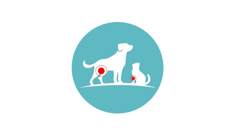 flexadin comprimés pour chiens et chats arthrose