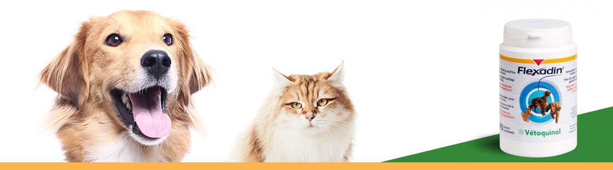 flexadin comprimés chiens et chats