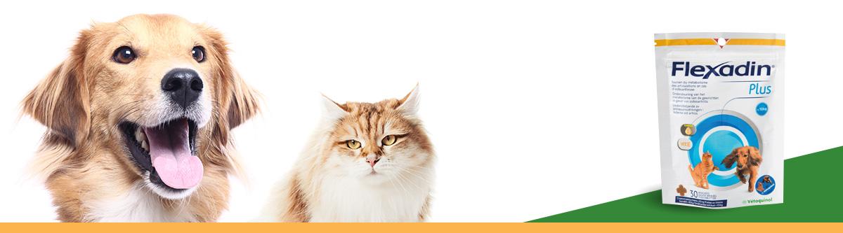 flexadin plus chat chiens mois de 10 kg