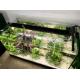 36594_Rampe-LED-AquaSky-pour-aquarium_de_Laurie_1041758234611b5aa6ce8783.25911181