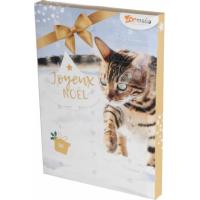 Advent calendar for cats (1)