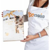 Advent calendar for cats (6)