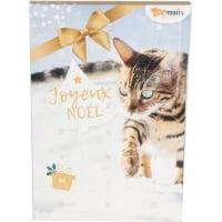 Advent calendar for cats (3)
